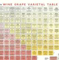 Wine grape varietal table