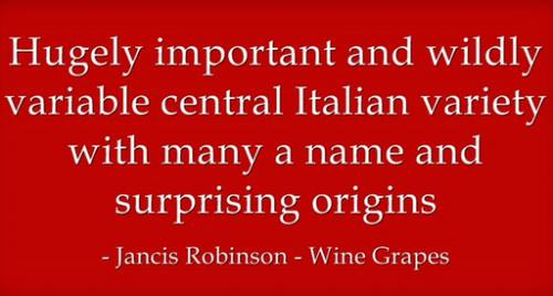 Sangiovese according to Jancis Robinson
