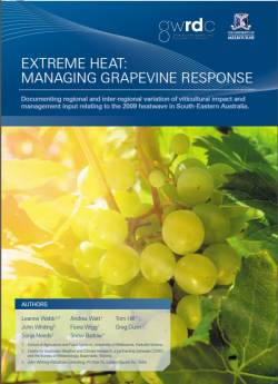 Heat wine in Vineyards paper