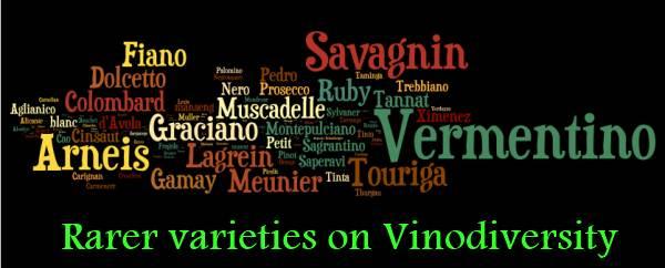 Rare grape varieties in Australia