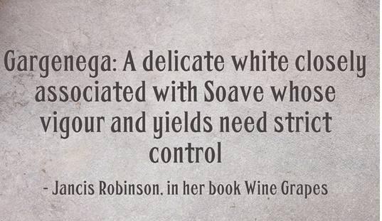 garganega Wine variety