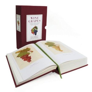 Jancis Robinson Wine Grapes Book