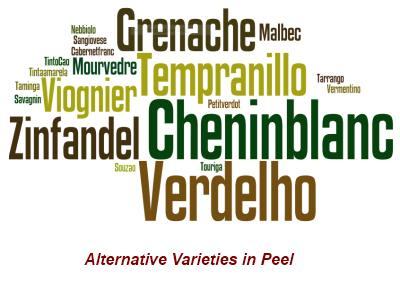 Alternative grape varieties in the Peel region