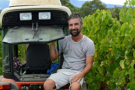 Franco d'Anna of Hoddles Creek Estate is a great enthusiast for Pinot Blanc