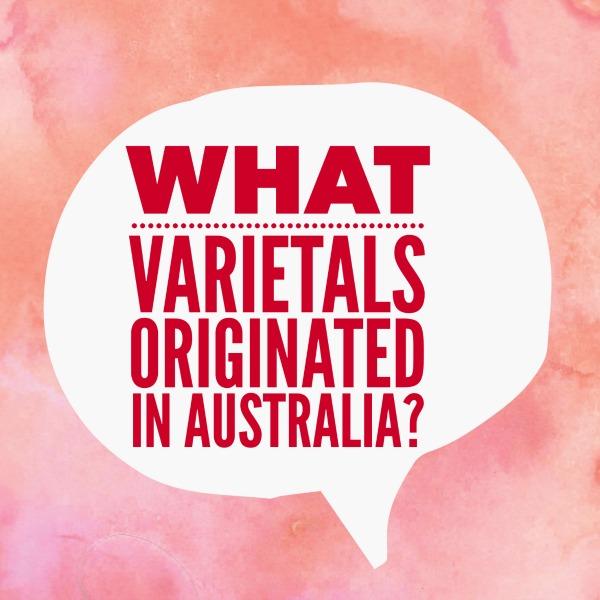Cienna, Rubienne, Taminga, Tarrango, Tyrian and Cygne Blanc are all distinct varieties of V.vinifera that originated in Australia.