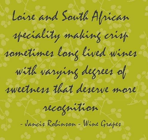 Quote about Chenin Blanc white wine variety By Jancis Robinson