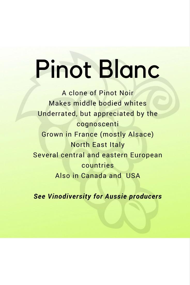 Pinot blanc white wine variety