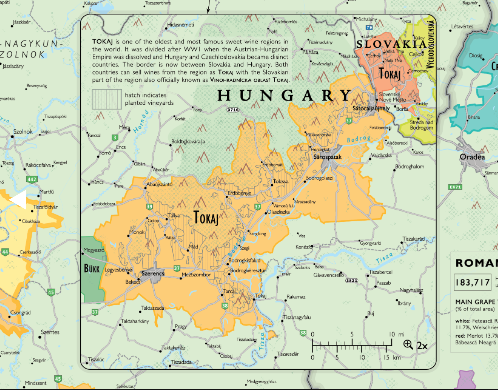 Tokaj wine region in Hungary