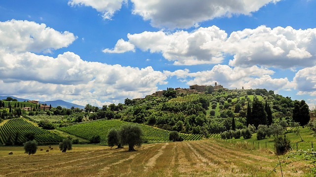 Tuscany landscape with vineyard and hilltop village
