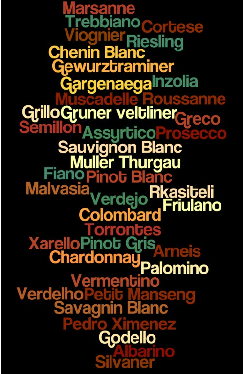40 white wine grape varieties