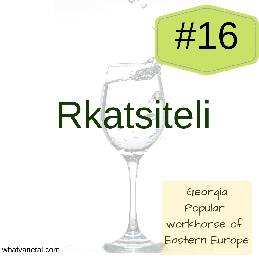 Rkatsiteli white wine variety is described in the book What Varietal is That?