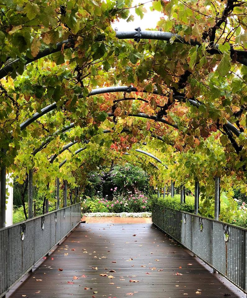 The entrance to Capel Vale Winery Cellar Door and Restaurant.