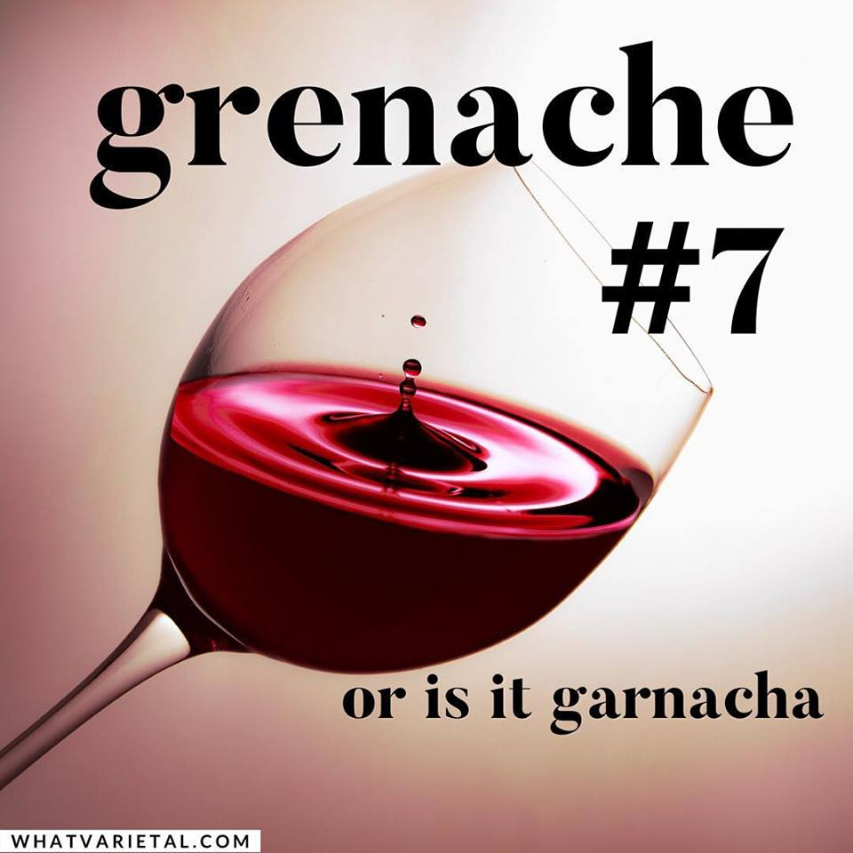 Grenache or Garnacha is the the e7th most popular wine grape in the world.